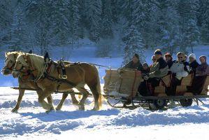 Pferdeschlittenfahren_Ramsau
